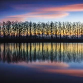 Twilight Silhouettes
