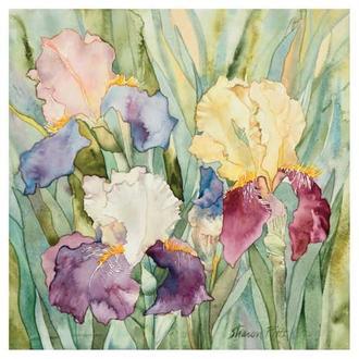 Jennifer's Irises