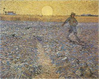 The Sower In His Field