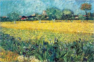 View of Arles Irises