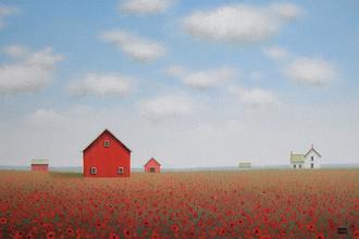 Long Poppy Farm