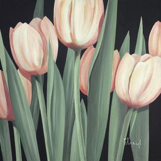 Tulips Harmony I