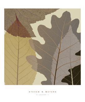 4 Leaves I