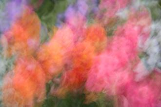 Color Impressions I