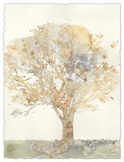 Chloes Tree II
