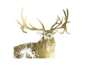 Gold Foil Elk