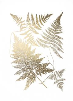 Gold Foil Ferns III