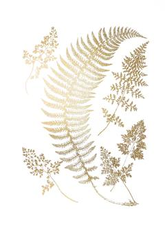 Gold Foil Ferns IV