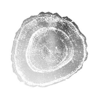 Silver Foil Tree Ring III