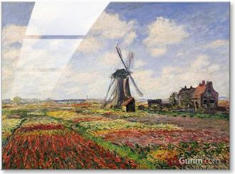 Tulip Fields With The Rijnsburg Windmill, 1886