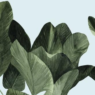 Celadon Palms I
