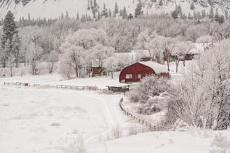Dreamy Winter Farm
