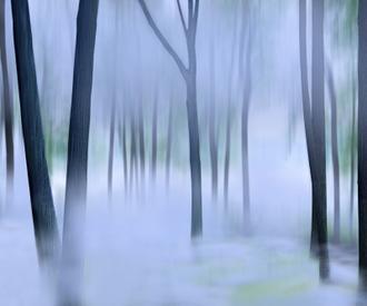Misty Mountains XVI