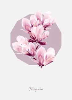 Poly Magnolia