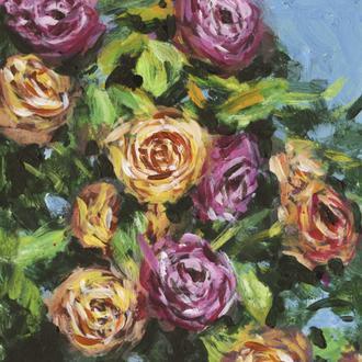 Roses in Sunlight I