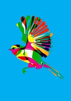 Bird, 2018 (30 Editions)