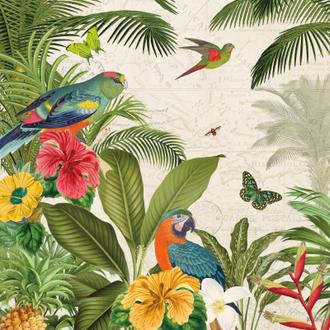 Parrot Paradise II