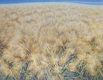 보리밭을 그리는 마음 - 황맥과 달개비꽃, 잡초, 1998