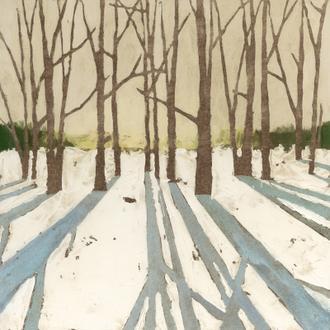 Winter Shadows II
