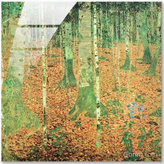 Birch Forest (자작나무 숲)