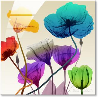 Floral Calm Pop