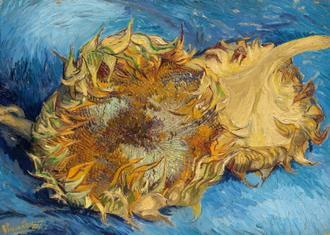 Sunflowers, 1887