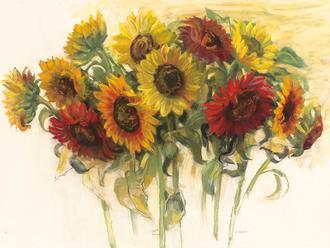 Gathering Sunflowers