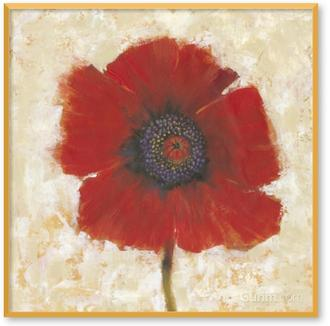 Red Poppy Portrait II