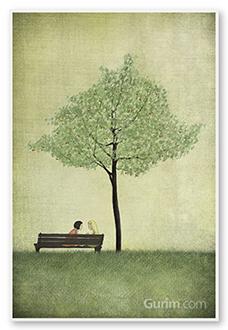 The Cherry Tree - Summer