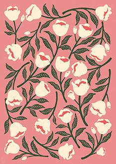 Roses Ⅱ