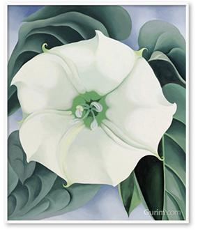 Jimson Weed-White Flower No.1. 1932